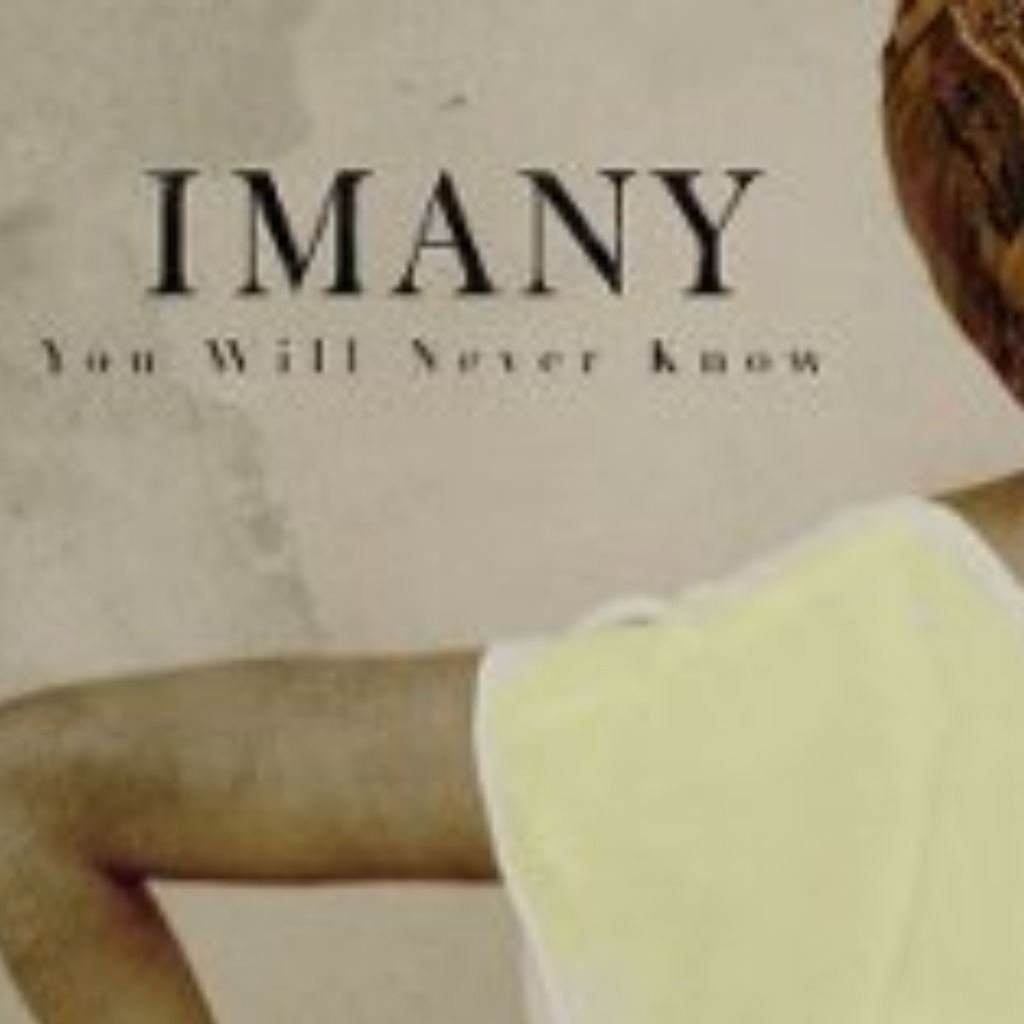 You Will Never Know(remix) - Lyrics and Music by Imany arranged by _GERMANN_