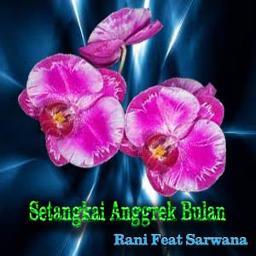 Setangkai Anggrek Bulan Lyrics And Music By Arranged By Psp 16