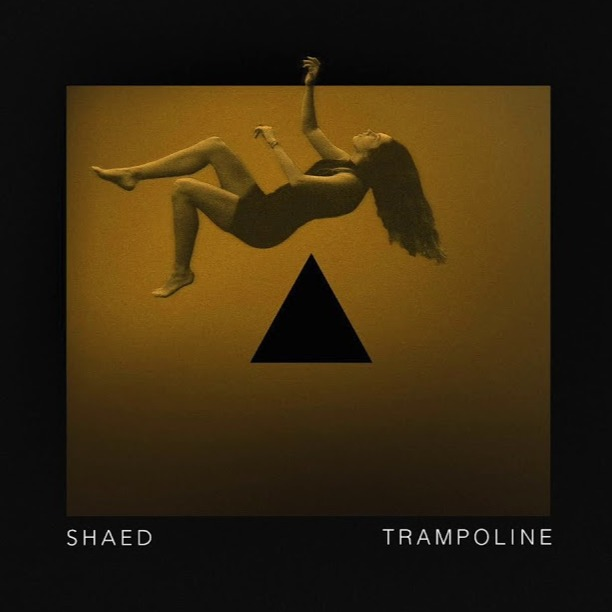 「shaed trampoline album cover」的圖片搜尋結果